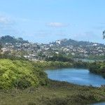 Shorter 30 minute Auckland walks