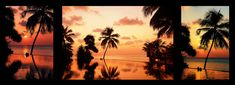 TRIPTYCH by JENNY RAINBOW.Triptych of colorful gorgeous sunset in tropics with reflection of the sky and palm silhouetts. Art photography for interior design and home ideas. Art Prints For Home, Fine Art Prints, Tropical Photographs, Fine Art Photography, Nature Photography, Triptych Art, Picture Comments, Thing 1, Acrylic Artwork