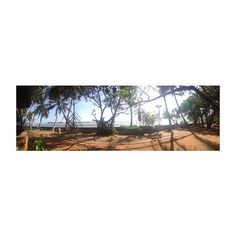 Sri Lanka  // #SriLanka #summerholidays #summer #sun #travel #asia
