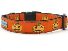 This Halloween collar has a great vintage feel.