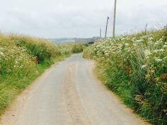the back lane, Sea Field View In The Heights, Country Roads, Sea, Spaces, Summer, Ocean, Summer Time