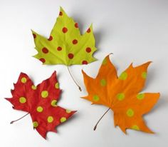 Pinta las hojas primero con un color base. Cuando sequen decóralas con lunares que contrasten con la tonalidad inicial.