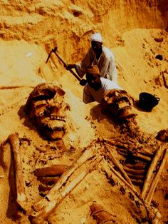 Nephilim is the word used to describe the giants spoken of in biblical times by Enoch as well as the giant David fought against (Goliath). It is generally believed that most of these Giants came about when the fallen angels had union with earthly woman. Ancient Aliens, Ancient Egypt, Ancient History, Ancient Mesopotamia, Bible Hébraïque, Hebrew Bible, Nephilim Giants, Nephilim Bones, Giant Skeleton