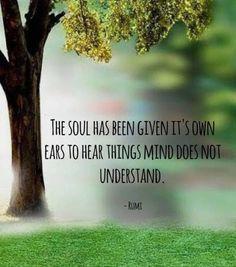 Yoga quotes rumi spiritual 58 new ideas Rumi Quotes, Yoga Quotes, Life Quotes, Inspirational Quotes, Motivational, Beau Message, Jalaluddin Rumi, Rumi Love, Rumi Poetry