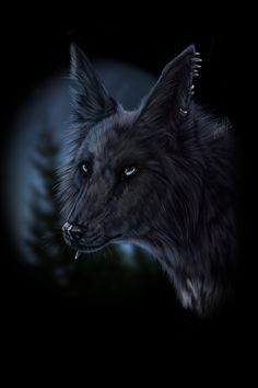 Silent by WolfRoad on DeviantArt