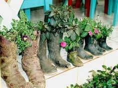 I've got herbs in my boots.