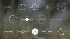 Buy Wedding Titles by monstrKesha on VideoHive. Wedding Titles is a modern After Effects template. Elegant, vintage, stylish or cute titles will be perfect as opene. Wedding Titles, Wedding Logos, Wedding Albums, After Effects Projects, After Effects Templates, Ashley Thomas, Special Text, Photography Courses, Wedding Videos