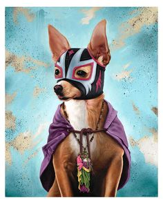 Chihuahua Lucha Libre....must somehow make this into a sewing pattern for my mil's chihuahua....
