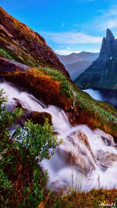 BEAUTY OF WORLD: Beauty Of Nature