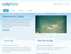 Cushy is a flexible and stylish business theme, perfectly suited to showcase your products and services, whilst showcasing your business to the world. Incorporating some nifty jQuery and an integrated blog, Cushy is a must for serious business owners.