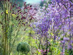 Huntingbrook Gardens