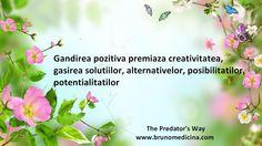 Positive thinking rewards creativity, finding solutions,finding alternatives, possibilities and potentialities - Bruno Medicina  http://www.traininguri.ro/predator-selling/ https://www.facebook.com/bruno.medicina.1?fref=ts http://www.brunomedicina.com/
