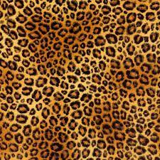 """Résultat de recherche d'images pour """"pattern jungle"""""""
