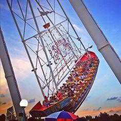 #としまえん #遊園地 #amusementpark  - @Yoshie Kubota- #webstagram