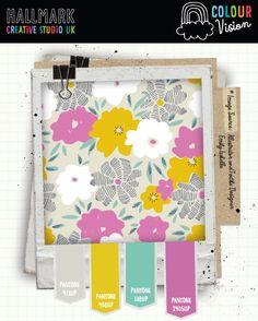 Colour Vision - Hallmark Creative Studio UK Blog