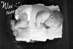 from a newborn session