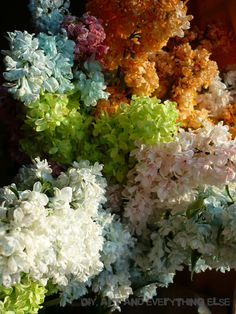 painted lilac Lettuce, Lilac, Vegetables, Diy, Ideas, Food, Decor, Decoration, Bricolage