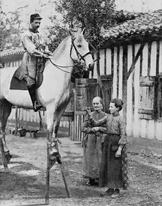 Résultats de recherche d'images pour «echasse et cheval»