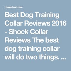 Best Dog Training Collar Reviews 2016 - Shock Collar Reviews The best dog training collar will do two things. First of all, they will allow you to enhance your communication with the dog. Secondly, they'll do so without leading to pain or psychological harm to the dog.