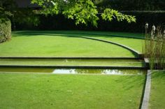 pure lines clear meditational greenscape marina-kruasko.livejournal.com