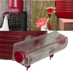BriteTap Chicken Waterer