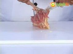 Desossar coxa e sobrecoxa de frango
