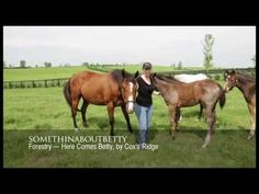 Meet the Mares: Somethinaboutbetty