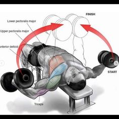 fitness Heavy compound exercises are known as one of the main exercises for gaining muscle mass and they should be included in your chest training. There are a lot of opinions. Gym Chest Workout, Chest Workout For Mass, Gym Workout Chart, Chest Workouts, Dumbbell Workout, Gym Workouts, Workout Abs, Chest Exercises, Dumbbell Fly