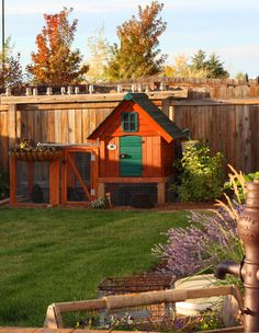 Backyard chickens are the best but if you live in a nice neighborhood you have to have a cute coop!! We found this dog house at Lowes, added the green door, cut a side door that goes into the pen area and put it up on some posts for more room under the coop. Easy to keep clean and a great addition to our yard. Plenty of room for 3 hens. Love the eggs that Frick, Frack and Henny lay for us everyday!