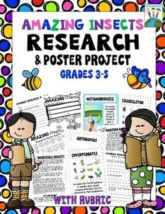 Amazing Insects Research Poster Project with Rubric