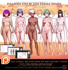 Fullbody Female shapes step by step tutorial pack(term 18 reward)