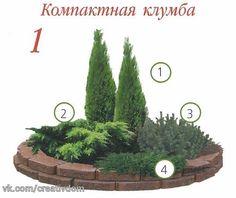 https://pp.vk.me/c623330/v623330685/3d8d4/Bj2Qryp6RPk.jpg