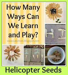 Creating with natural materials: Fun Friday features by Teach Preschool