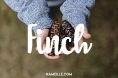 Baby Name Generator – Archer I Boho & Earthy Names for Boys I Baby Names I Namie… New Baby Names, Unisex Baby Names, Unusual Baby Names, Cute Baby Names, Baby Name List, Unique Baby, Unique Names, Pretty Names, Chic Baby