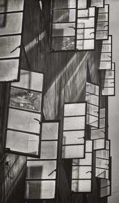 Images of 1950s and 1960s Hong Kong by James Chung | South China Morning Post Shadow Photos, Morning Post, Pre Production, Long Shadow, Hong Kong, 1960s, China, 2d, Space