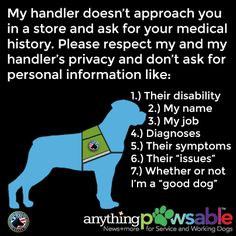 Here are the top 10 things Service Dog handlers want you to know about their canine partner, the law, access rights, and Service Dog etiquette. Psychiatric Services, Psychiatric Service Dog, Service Dog Training, Service Dogs, Training Pads, Training Schedule, Crate Training, Training Classes, Public Service
