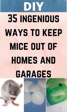 Diy Home Decor Easy, Diy Home Crafts, Life Hacks Home, Bedroom Crafts, Hacks Diy, Mice, Facts, Garages, Household Tips