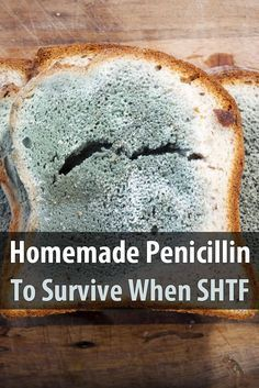 If the SHTF, antibiotics will be scarce, which means many people could die from minor infections. Learn to make your own antibiotics.  via @urbanalan