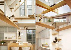 ヘーベルハウスのラインナップにネコ好きのためのネコ好きによるネコを最優先したものすごいハウスデザインがありました。その名は「ぷらすにゃんプラン2」、名前からしてネコの方が人間よりも優遇されていそう