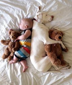 Some people think it's dangerous to let newborns mingle with their dogs — CUTE pic ideas of baby and dog!