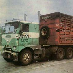 Farm Trucks, Gmc Trucks, Cool Trucks, Livestock Trailers, Freightliner Trucks, Vintage Trucks, Diesel Engine, Rigs, Tractors