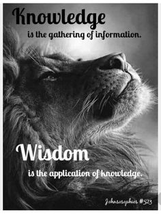 Wisdom is a total fraud, and I have to wonder if Wisdom is even his real name. Quotable Quotes, Wisdom Quotes, True Quotes, Great Quotes, Motivational Quotes, Inspirational Quotes, Qoutes, True Sayings, Lion Quotes
