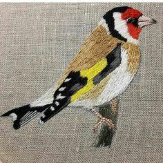 Pássaro bordado