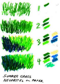 Grass textures demo drawing with all four stages in oil pastels