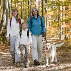 The modern dog is a direct descendant of the gray wolf so it's no wonder they love the great outdoors. Here are a few of the best dog breeds for hiking. Best Dog Breeds, Best Dogs, Lost In The Woods, State Of Arizona, Hiking With Kids, Hiking Dogs, Outdoor Fun, Outdoor Patios, Family Dogs