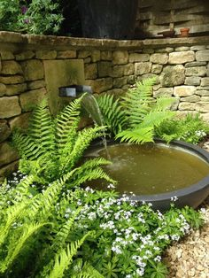 Cotswold garden water features: ponds, streams traditional & modern - Cotswold garden water features: ponds, streams traditional & modern Source by - Modern Water Feature, Small Water Features, Diy Water Feature, Outdoor Water Features, Water Features In The Garden, Garden Features, Japanese Water Feature, Backyard Water Feature, Small Water Gardens