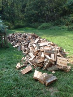 Our winter wood. Before stacking.