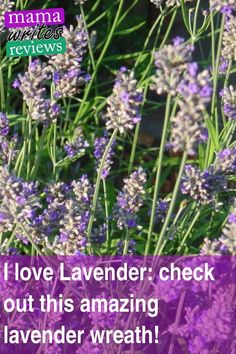 I love Lavender: check out this amazing lavender wreath! Family Crafts, Crafts For Kids, Lavender Wreath, Spa Day At Home, Over The Hill, Practical Magic, Gardening Hacks, Urban Gardening, Organic Gardening