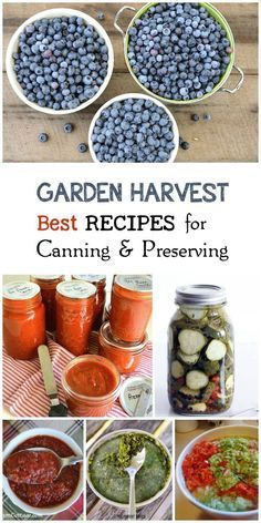 Best recipes from experienced organic gardeners capturing the best of the harvest including ideas for canning and preserving vegetables, fruits, and nuts. Try out these frugal ideas and increase your food security.