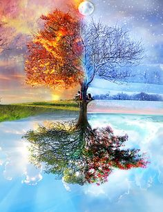 A colorful print that make you wonder what it would be like under that tree with the coolest person in your life.